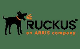 11 Ruckus